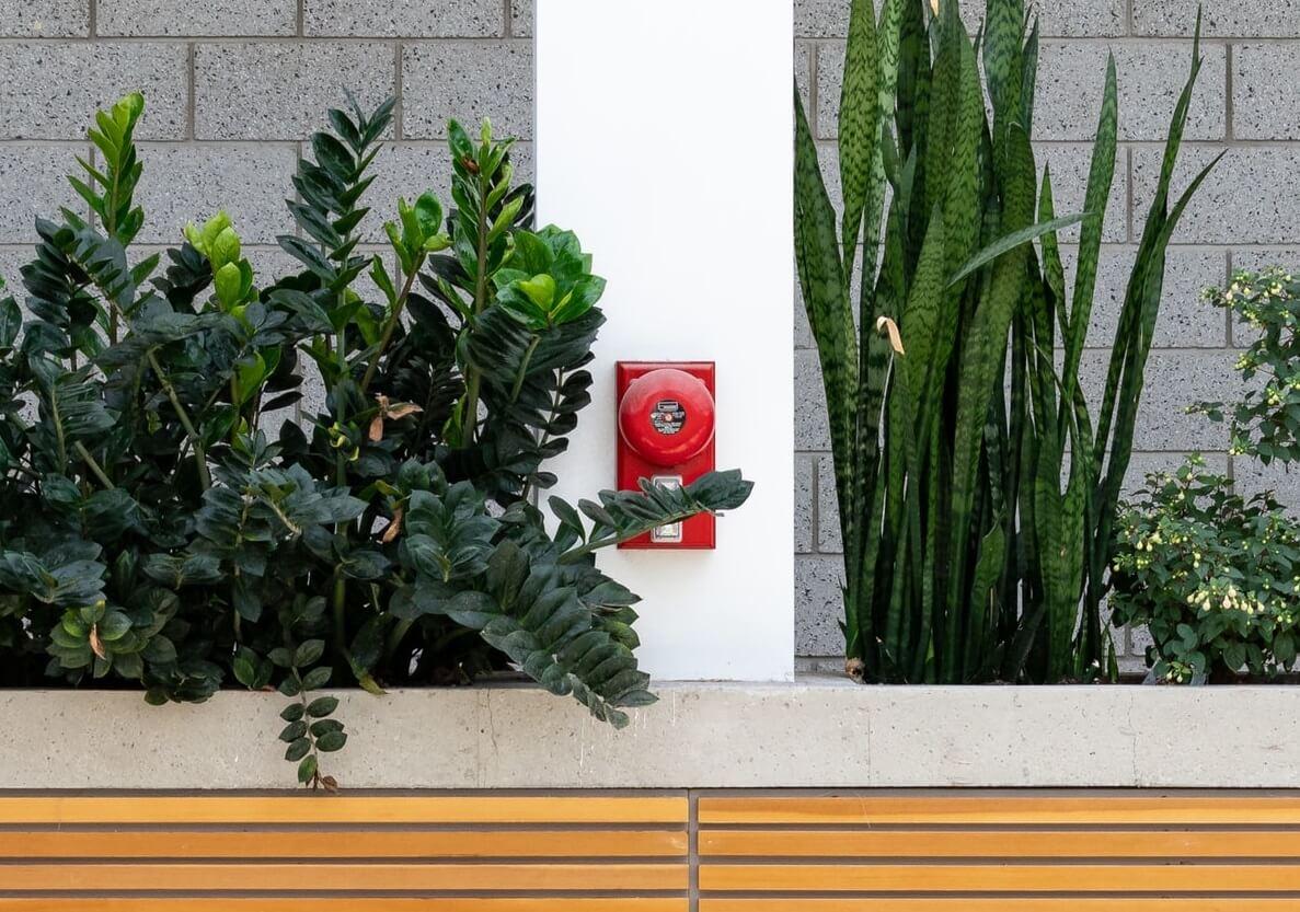 System sygnalizacji pożaru SSP